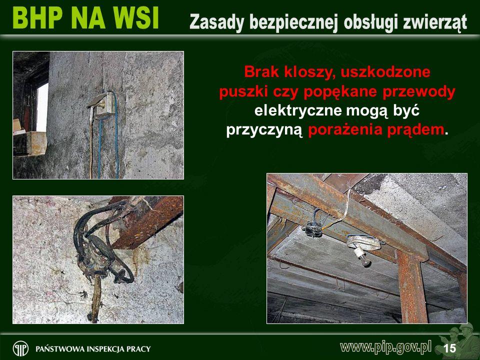 15 Brak kloszy, uszkodzone puszki czy popękane przewody elektryczne mogą być przyczyną porażenia prądem.