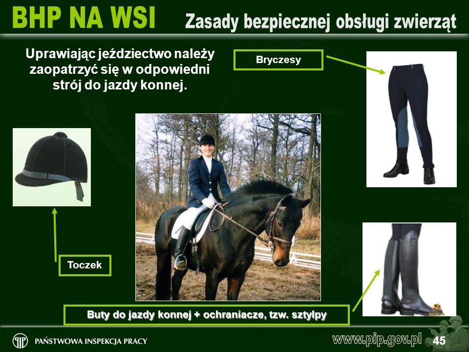 45 Uprawiając jeździectwo należy zaopatrzyć się w odpowiedni strój do jazdy konnej. Bryczesy Buty do jazdy konnej + ochraniacze, tzw. sztylpy Toczek