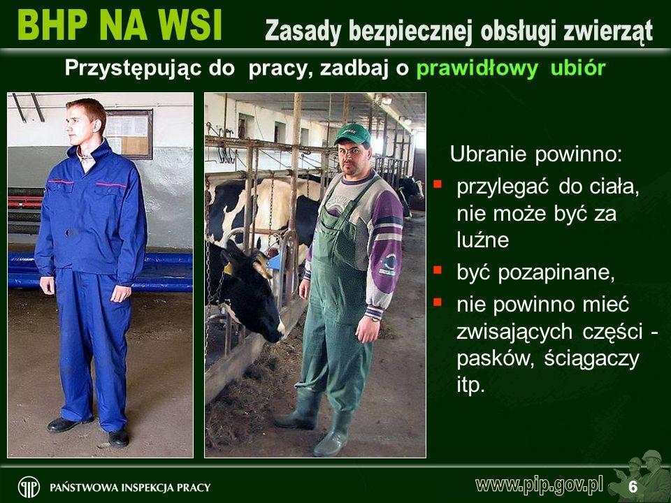 7 Obuwie robocze używane do pracy w gospodarstwie powinno mieć antypoślizgową podeszwę.