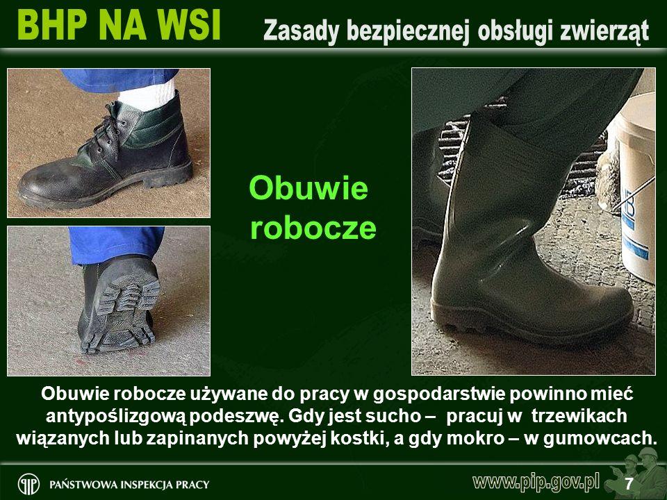 7 Obuwie robocze używane do pracy w gospodarstwie powinno mieć antypoślizgową podeszwę. Gdy jest sucho – pracuj w trzewikach wiązanych lub zapinanych