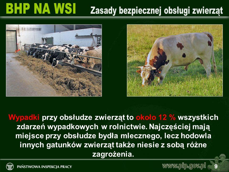 9 Wypadki przy obsłudze zwierząt to około 12 % wszystkich zdarzeń wypadkowych w rolnictwie. Najczęściej mają miejsce przy obsłudze bydła mlecznego, le