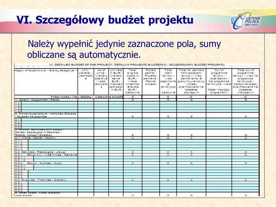 VI. Szczegółowy budżet projektu Należy wypełnić jedynie zaznaczone pola, sumy obliczane są automatycznie.