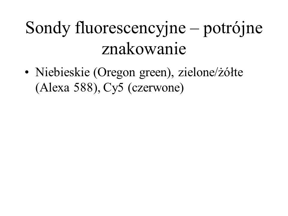 Sondy fluorescencyjne – potrójne znakowanie Niebieskie (Oregon green), zielone/żółte (Alexa 588), Cy5 (czerwone)