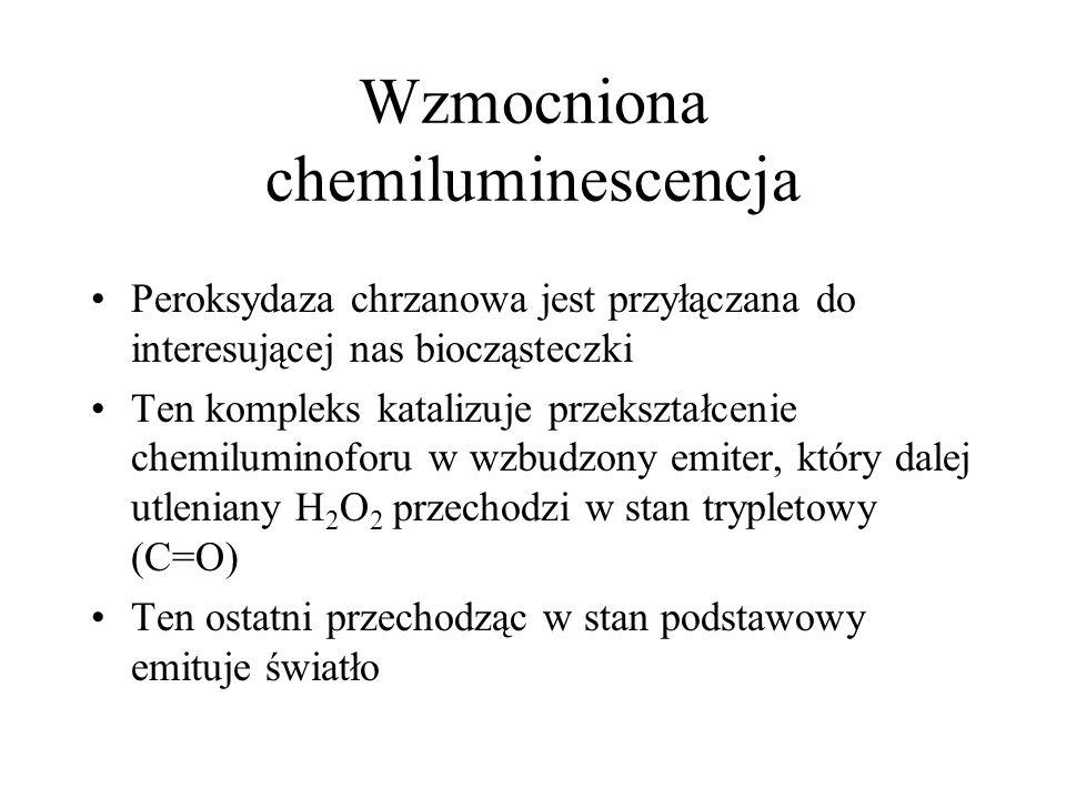 Wzmocniona chemiluminescencja Peroksydaza chrzanowa jest przyłączana do interesującej nas biocząsteczki Ten kompleks katalizuje przekształcenie chemil