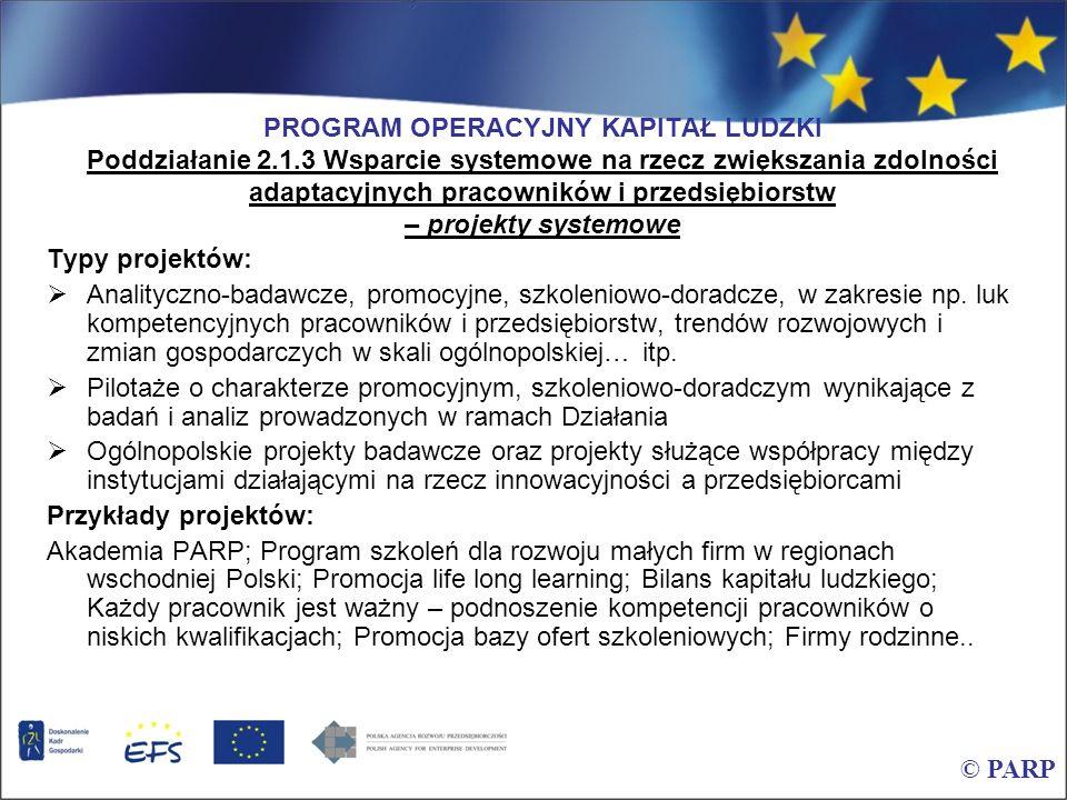 PROGRAM OPERACYJNY KAPITAŁ LUDZKI Poddziałanie 2.1.3 Wsparcie systemowe na rzecz zwiększania zdolności adaptacyjnych pracowników i przedsiębiorstw – p
