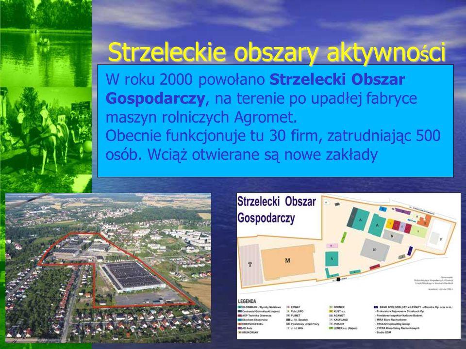 Strzeleckie obszary aktywno ś ci W roku 2000 powołano Strzelecki Obszar Gospodarczy, na terenie po upadłej fabryce maszyn rolniczych Agromet. Obecnie