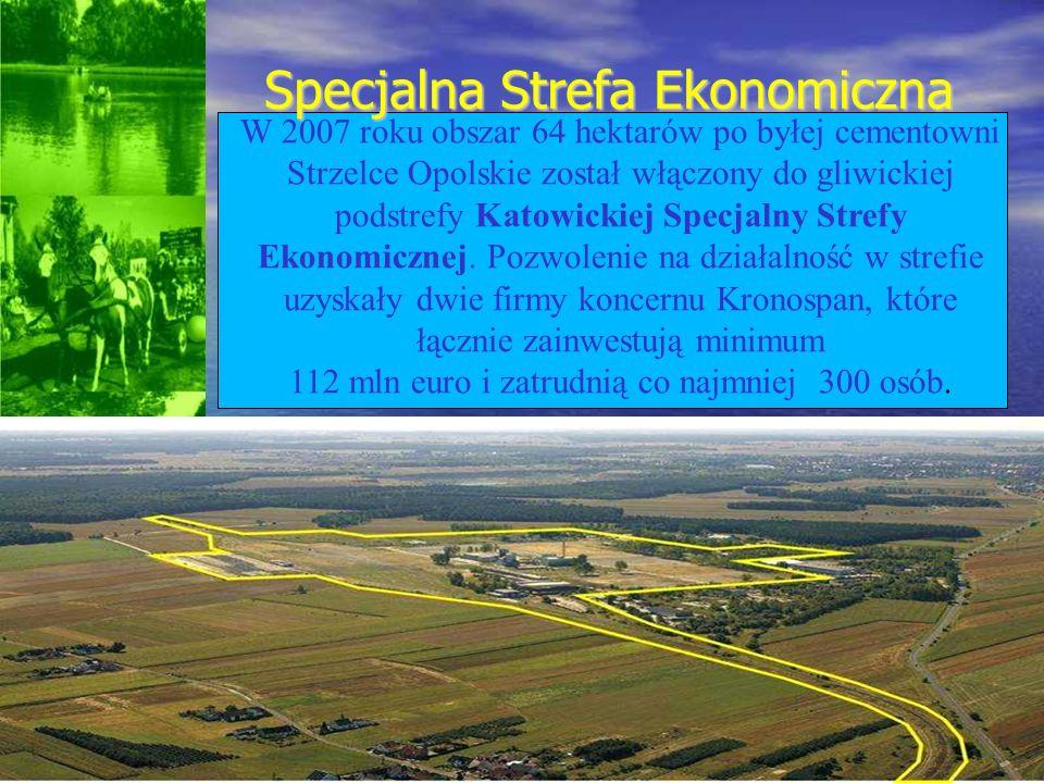 W 2007 roku obszar 64 hektarów po byłej cementowni Strzelce Opolskie został włączony do gliwickiej podstrefy Katowickiej Specjalny Strefy Ekonomicznej