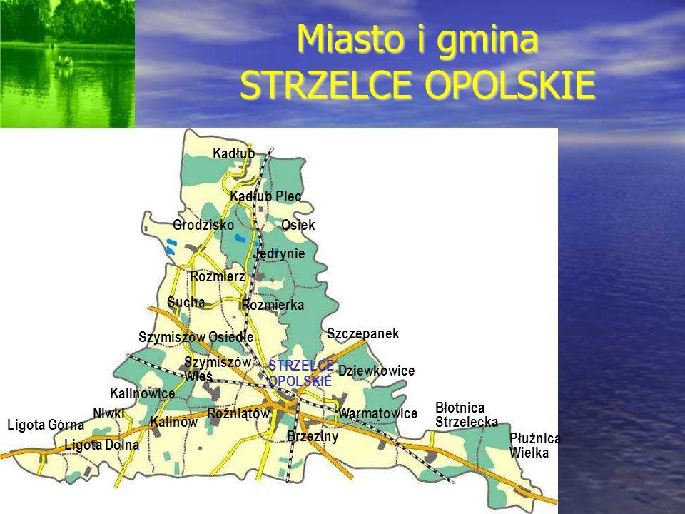 W 2007 roku obszar 64 hektarów po byłej cementowni Strzelce Opolskie został włączony do gliwickiej podstrefy Katowickiej Specjalny Strefy Ekonomicznej.