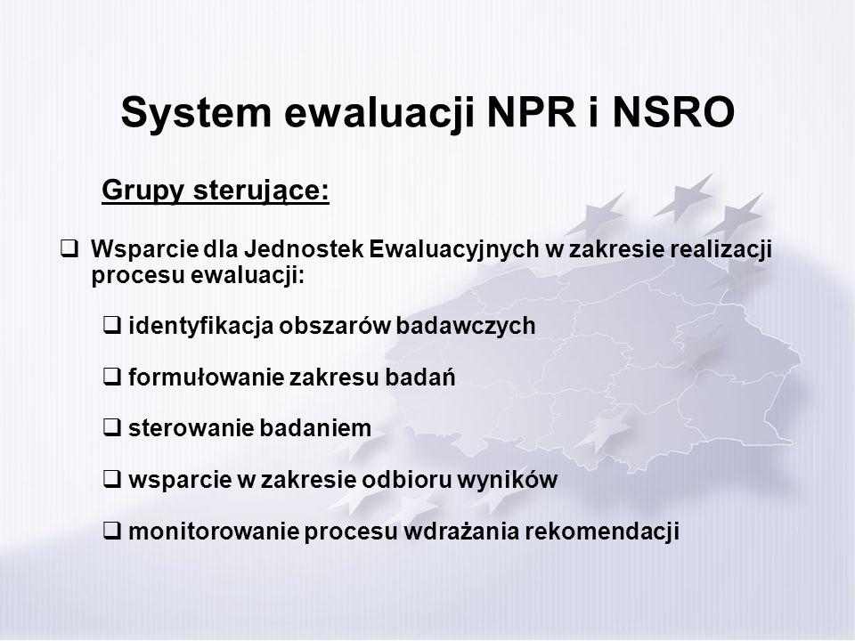 System ewaluacji NPR i NSRO Grupy sterujące: Wsparcie dla Jednostek Ewaluacyjnych w zakresie realizacji procesu ewaluacji: identyfikacja obszarów bada