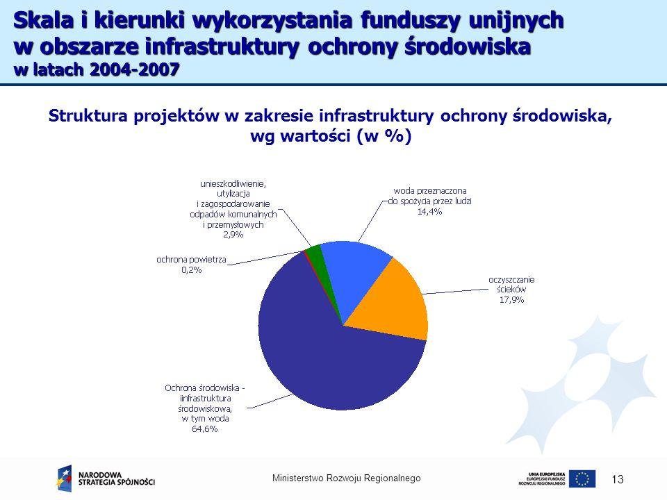 Ministerstwo Rozwoju Regionalnego 13 Struktura projektów w zakresie infrastruktury ochrony środowiska, wg wartości (w %) Skala i kierunki wykorzystani