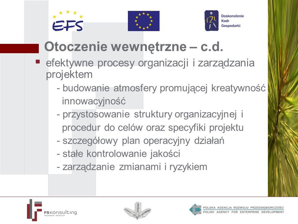 Otoczenie wewnętrzne – c.d. efektywne procesy organizacji i zarządzania projektem - budowanie atmosfery promującej kreatywność i innowacyjność - przys