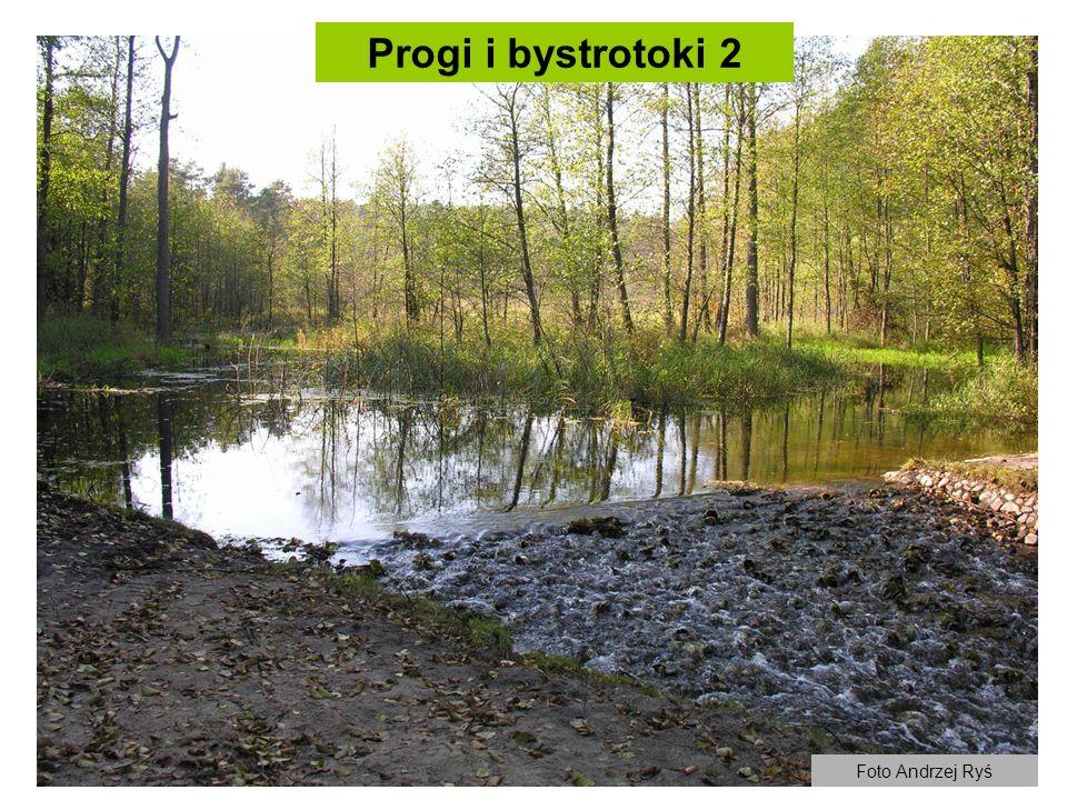 Progi i bystrotoki 2 Foto Andrzej Ryś