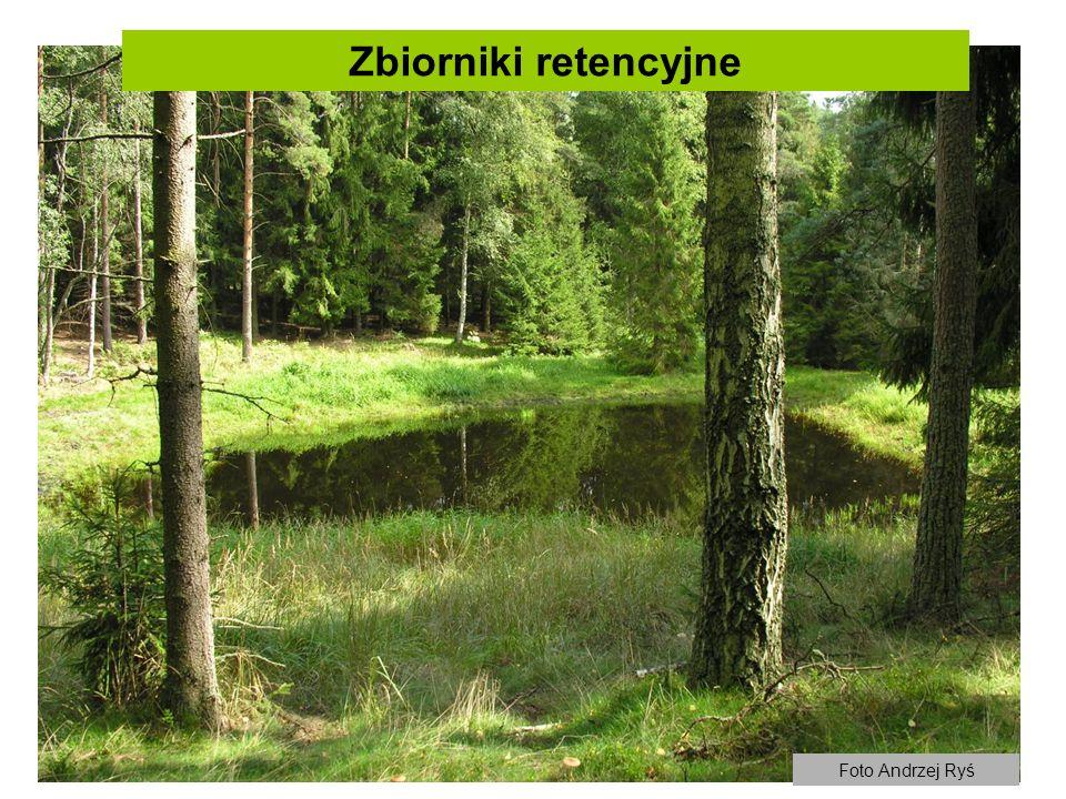 Zbiorniki retencyjne Foto Andrzej Ryś