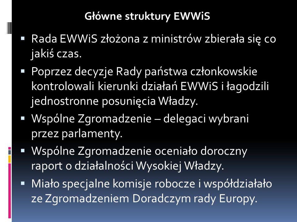 Rada EWWiS złożona z ministrów zbierała się co jakiś czas. Poprzez decyzje Rady państwa członkowskie kontrolowali kierunki działań EWWiS i łagodzili j