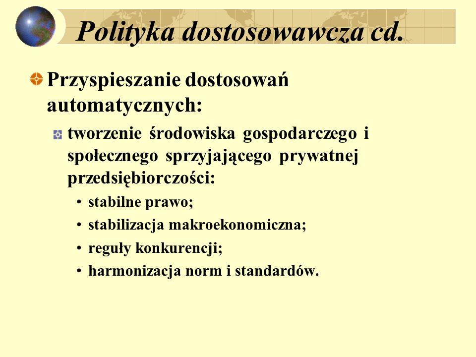 Polityka dostosowawcza cd. Przyspieszanie dostosowań automatycznych: tworzenie środowiska gospodarczego i społecznego sprzyjającego prywatnej przedsię