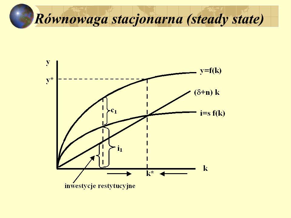 Równowaga stacjonarna (steady state)