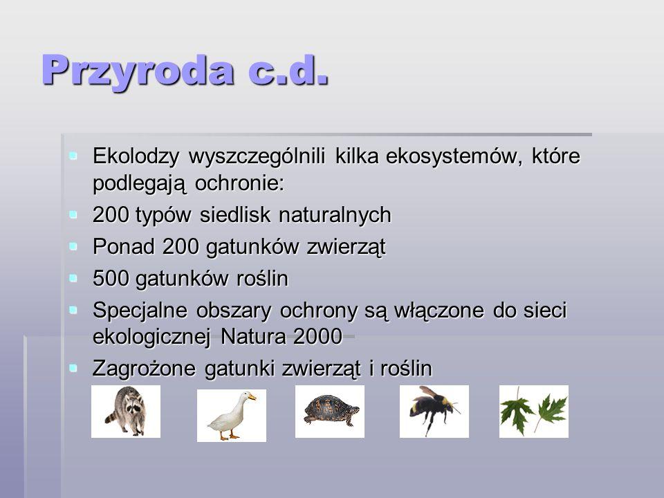 Przyroda c.d. Ekolodzy wyszczególnili kilka ekosystemów, które podlegają ochronie: Ekolodzy wyszczególnili kilka ekosystemów, które podlegają ochronie