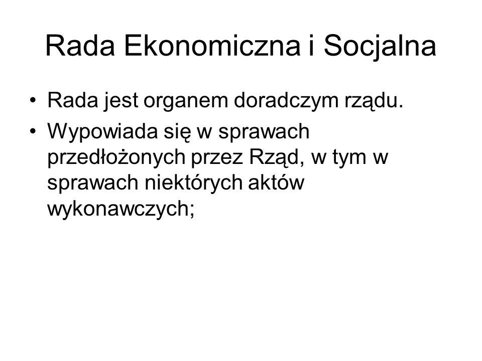 Rada Ekonomiczna i Socjalna Rada jest organem doradczym rządu. Wypowiada się w sprawach przedłożonych przez Rząd, w tym w sprawach niektórych aktów wy