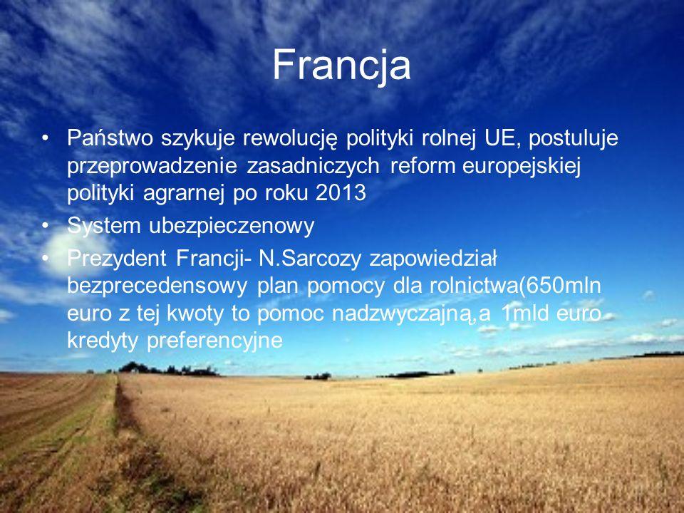 3) Porównanie rolnictwa w poszczególnych państwach Rolnictwo w Polsce Rolnictwo w Niemczech Rolnictwo we Francji