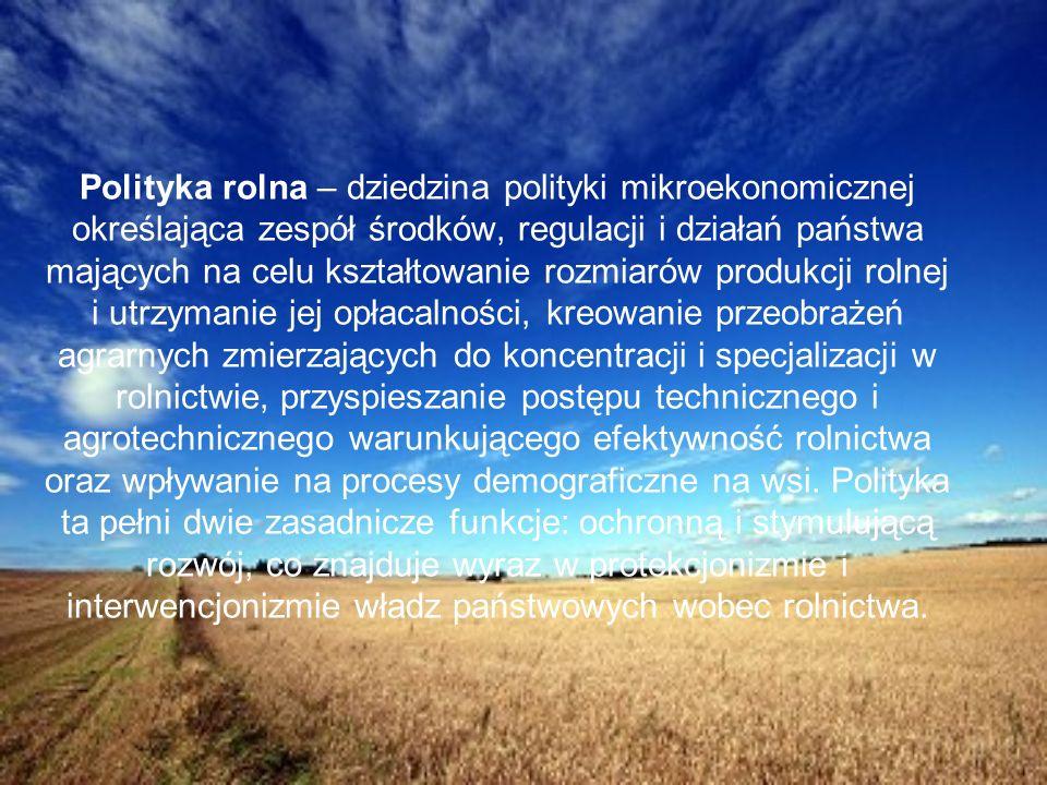 1.Analiza sektora rolnego w Europie – od średniowiecza po dziś 2.Obecna sytuacja dotycząca rolnictwa w poszczególnych państwach 3.Porównanie rolnictwa w poszczególnych państwach 4.Problemy wsi 5.Projekty europejskie dla polskiej wsi