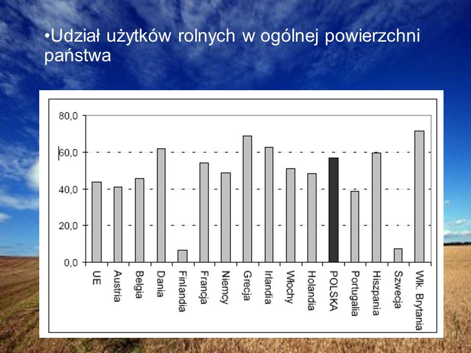 4) Problemy wsi Najważniejszym takim problemem jest wysokie bezrobocie, brak miejsc pracy i niemożliwość wykorzystania około jednej czwartej zasobów siły roboczej na wsi Utrzymuje się trudna sytuacja ekonomiczna w rolnictwie, prowadząca do pogłębiania się dystansu rozwojowego między rolnictwem polskim i unijnym.