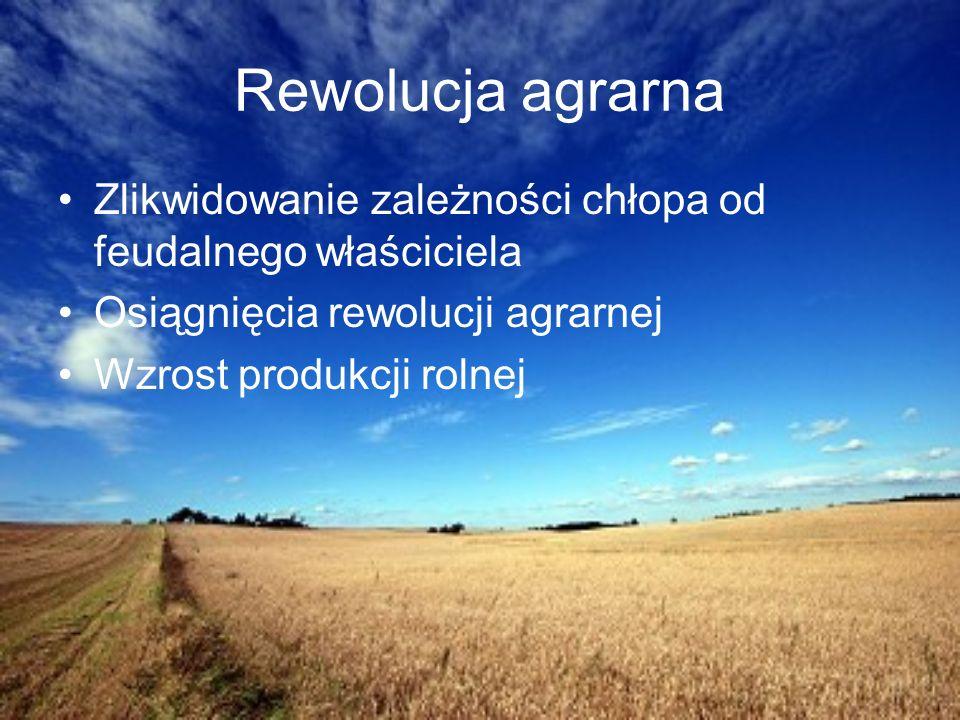 XX wiek Rośnie wydajność pracy w rolnictwie i przemyśle Państwowe programy interwencyjne