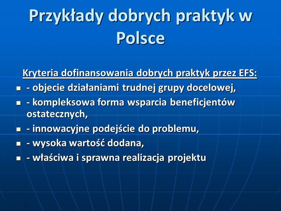 Przykłady dobrych praktyk w Polsce Kryteria dofinansowania dobrych praktyk przez EFS: - objecie działaniami trudnej grupy docelowej, - objecie działaniami trudnej grupy docelowej, - kompleksowa forma wsparcia beneficjentów ostatecznych, - kompleksowa forma wsparcia beneficjentów ostatecznych, - innowacyjne podejście do problemu, - innowacyjne podejście do problemu, - wysoka wartość dodana, - wysoka wartość dodana, - właściwa i sprawna realizacja projektu - właściwa i sprawna realizacja projektu