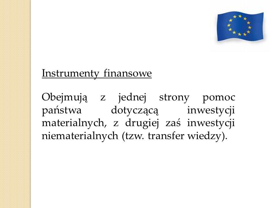 Instrumenty finansowe Obejmują z jednej strony pomoc państwa dotyczącą inwestycji materialnych, z drugiej zaś inwestycji niematerialnych (tzw. transfe
