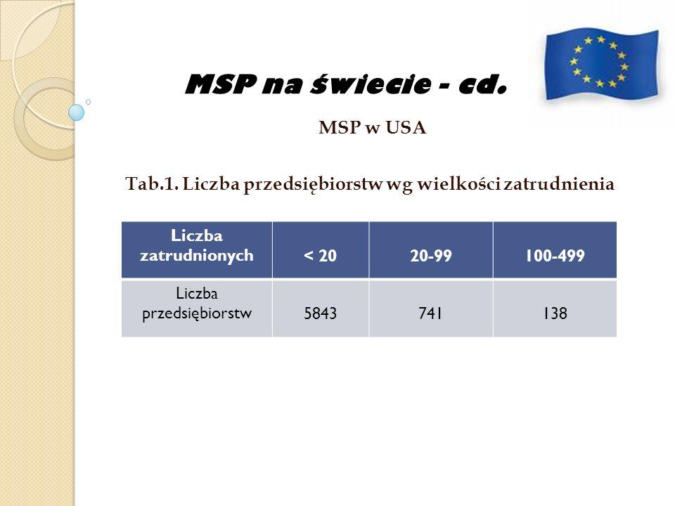 Program Wieloletni rodzaj planowania strategicznego jest tworzony na okres kilku lat Parlament- organ, który rozpatruje plany wieloletnie Plany wieloletnie w Polsce: Przed II wojną światową- plan 4-letni Od 1938r.- plan 3-letni W latach pięćdziesiątych- plan 5-letni