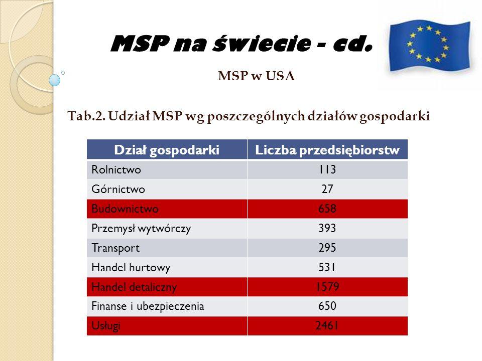 MSP na świecie - cd.