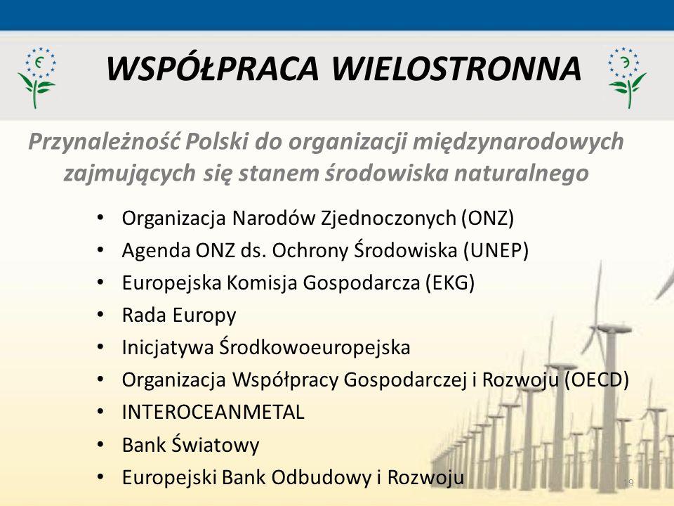 19 WSPÓŁPRACA WIELOSTRONNA Organizacja Narodów Zjednoczonych (ONZ) Agenda ONZ ds. Ochrony Środowiska (UNEP) Europejska Komisja Gospodarcza (EKG) Rada