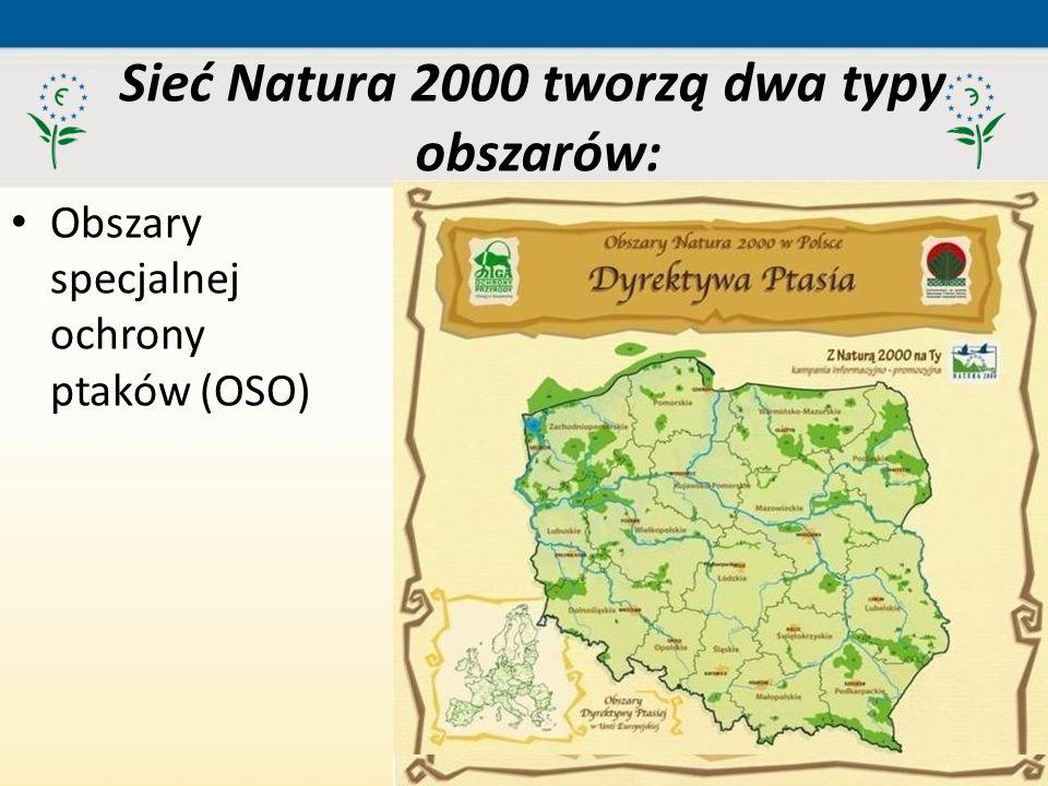 51 Obszary specjalnej ochrony ptaków (OSO) Sieć Natura 2000 tworzą dwa typy obszarów: