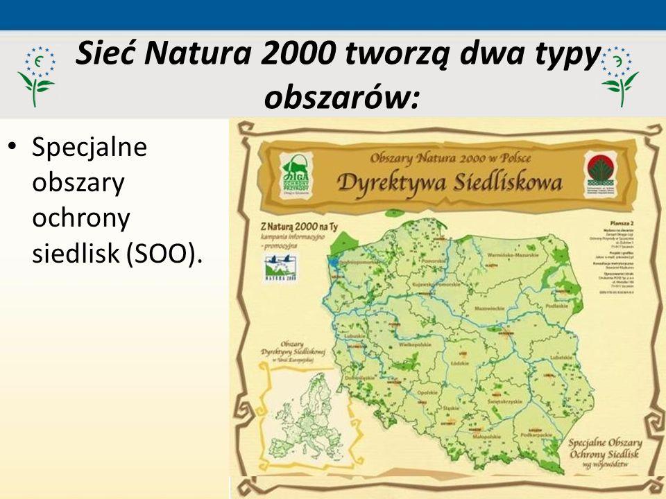 52 Specjalne obszary ochrony siedlisk (SOO). Sieć Natura 2000 tworzą dwa typy obszarów: