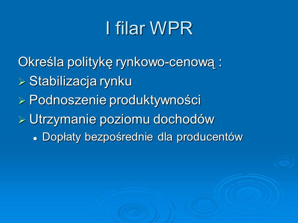 I filar WPR Określa politykę rynkowo-cenową : Stabilizacja rynku Stabilizacja rynku Podnoszenie produktywności Podnoszenie produktywności Utrzymanie p