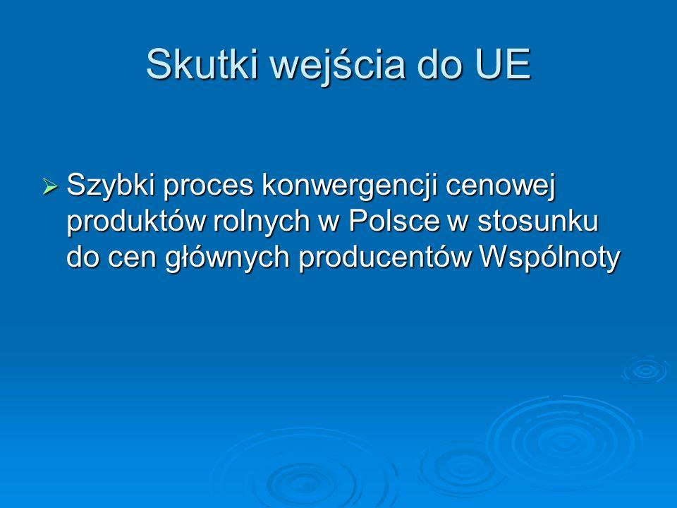 Skutki wejścia do UE Szybki proces konwergencji cenowej produktów rolnych w Polsce w stosunku do cen głównych producentów Wspólnoty Szybki proces konw
