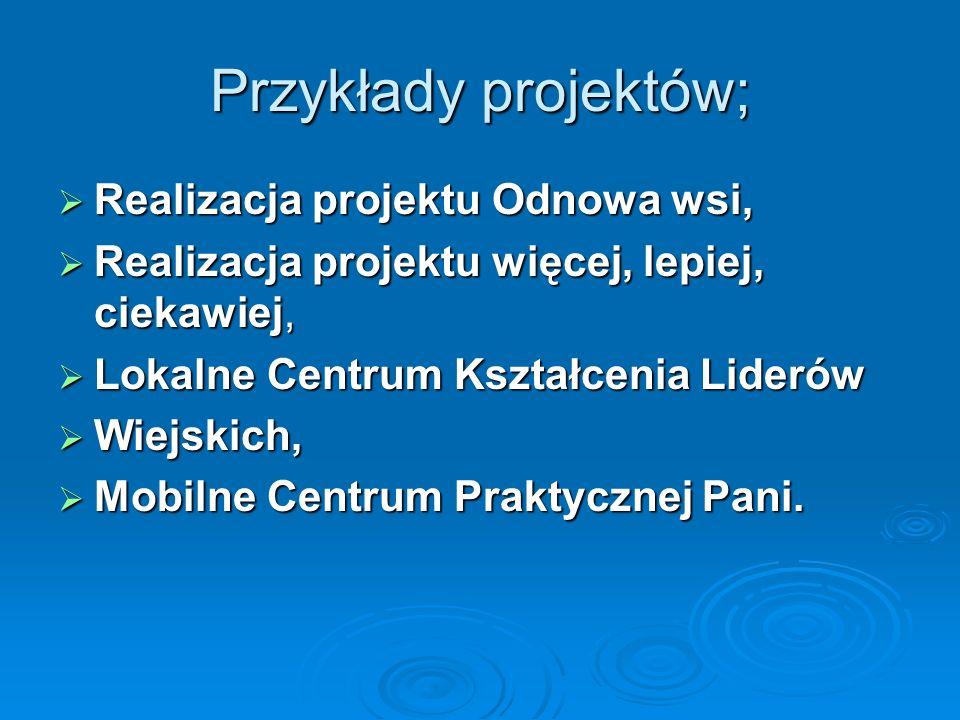 Przykłady projektów; Realizacja projektu Odnowa wsi, Realizacja projektu Odnowa wsi, Realizacja projektu więcej, lepiej, ciekawiej, Realizacja projekt
