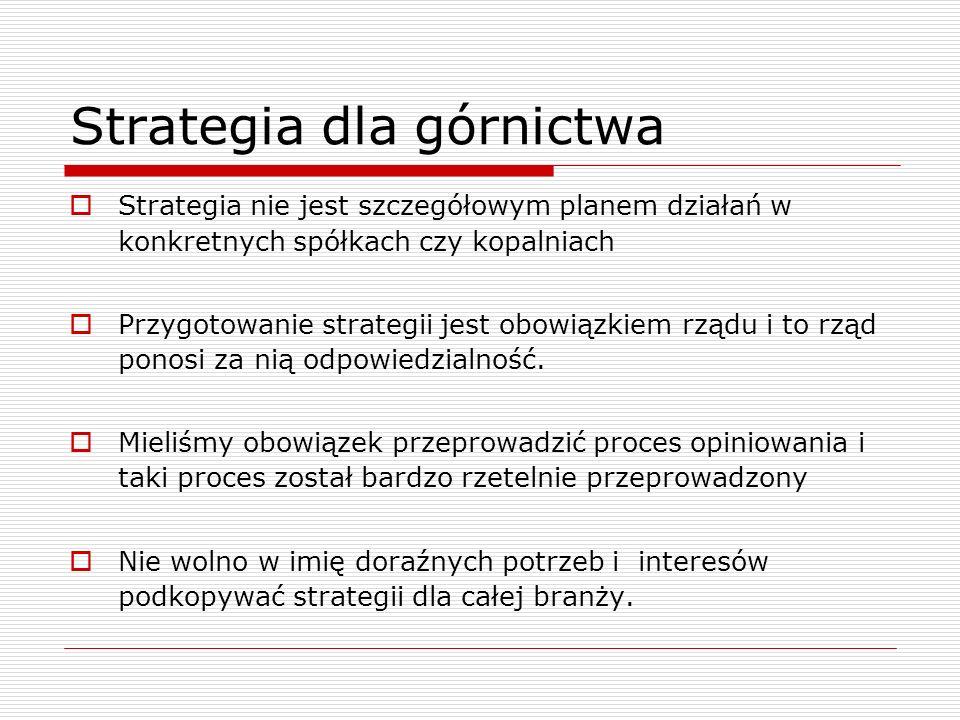 Strategia dla górnictwa Strategia nie jest szczegółowym planem działań w konkretnych spółkach czy kopalniach Przygotowanie strategii jest obowiązkiem rządu i to rząd ponosi za nią odpowiedzialność.