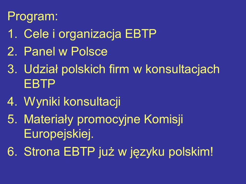 Program: 1.Cele i organizacja EBTP 2.Panel w Polsce 3.Udział polskich firm w konsultacjach EBTP 4.Wyniki konsultacji 5.Materiały promocyjne Komisji Europejskiej.