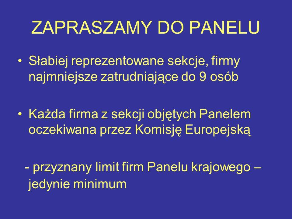 ZAPRASZAMY DO PANELU Słabiej reprezentowane sekcje, firmy najmniejsze zatrudniające do 9 osób Każda firma z sekcji objętych Panelem oczekiwana przez Komisję Europejską - przyznany limit firm Panelu krajowego – jedynie minimum