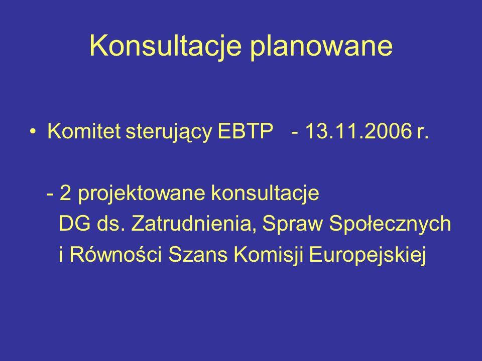 Konsultacje planowane Komitet sterujący EBTP - 13.11.2006 r.
