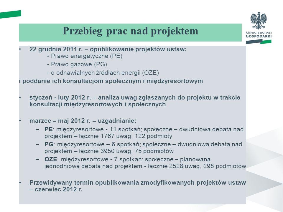 Przebieg prac nad projektem 22 grudnia 2011 r.