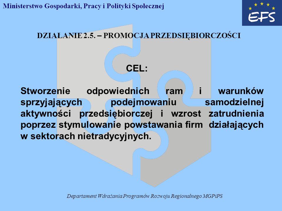 Departament Wdrażania Programów Rozwoju Regionalnego MGPiPS DZIAŁANIE 2.5.