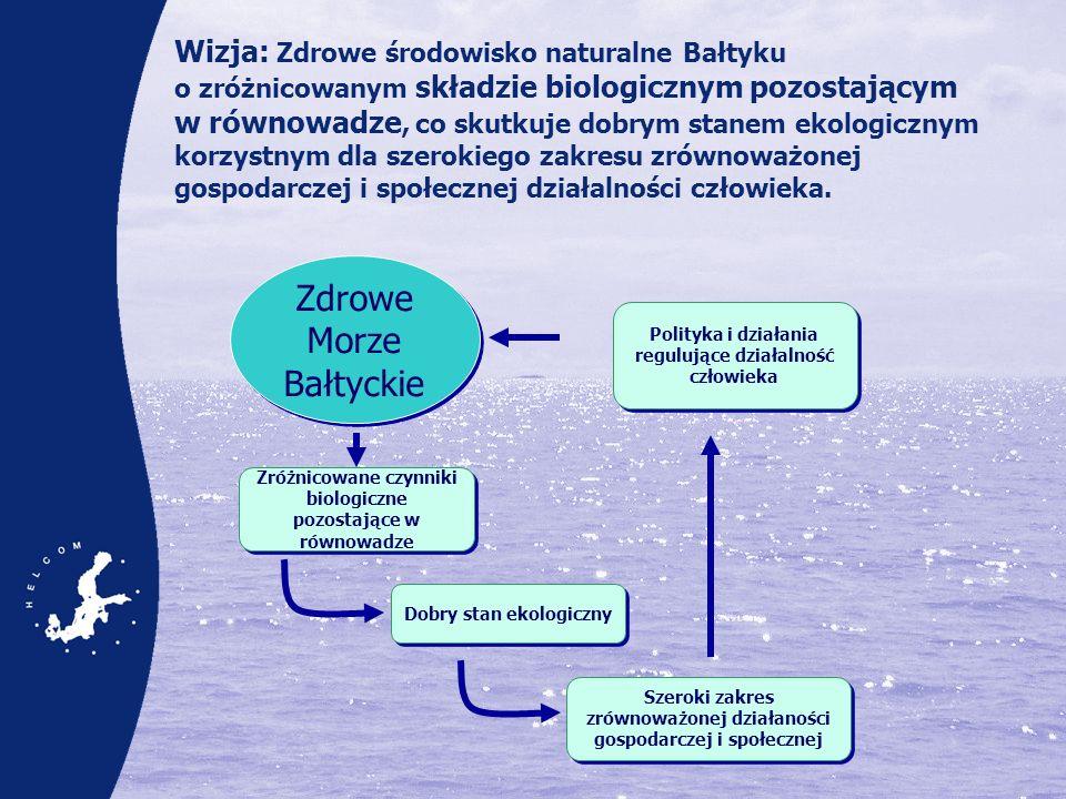 Wizja: Zdrowe środowisko naturalne Bałtyku o zróżnicowanym składzie biologicznym pozostającym w równowadze, co skutkuje dobrym stanem ekologicznym kor
