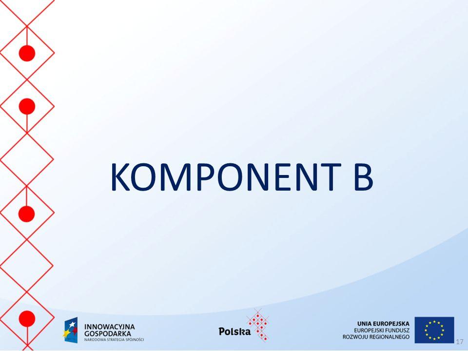 KOMPONENT B 17