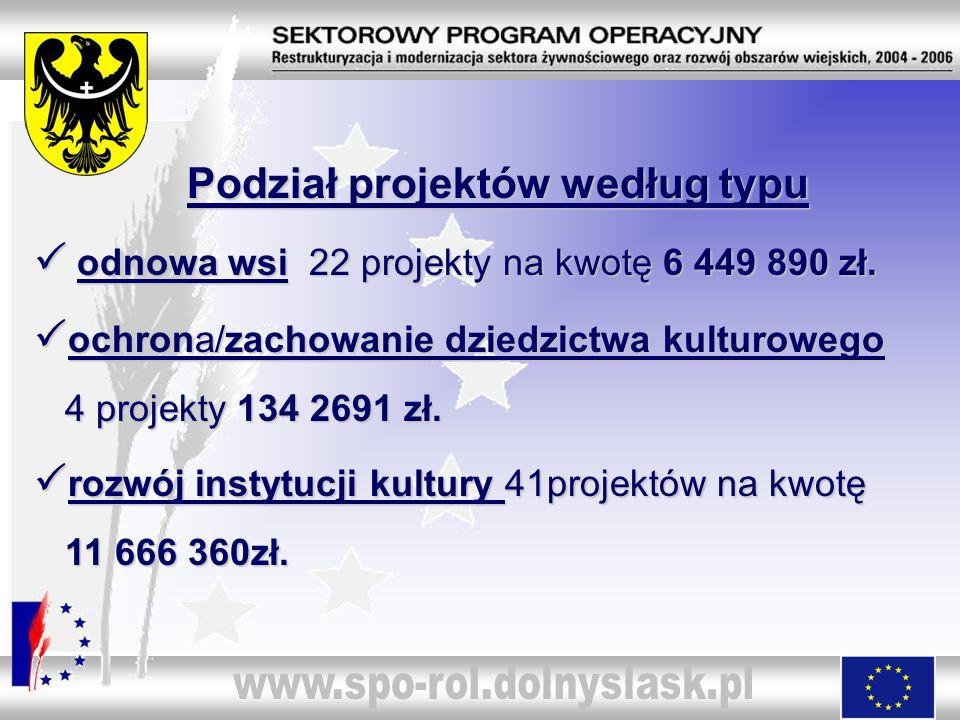 Podział projektów według typu Podział projektów według typu odnowa wsi 22 projekty na kwotę 6 449 890 zł. odnowa wsi 22 projekty na kwotę 6 449 890 zł