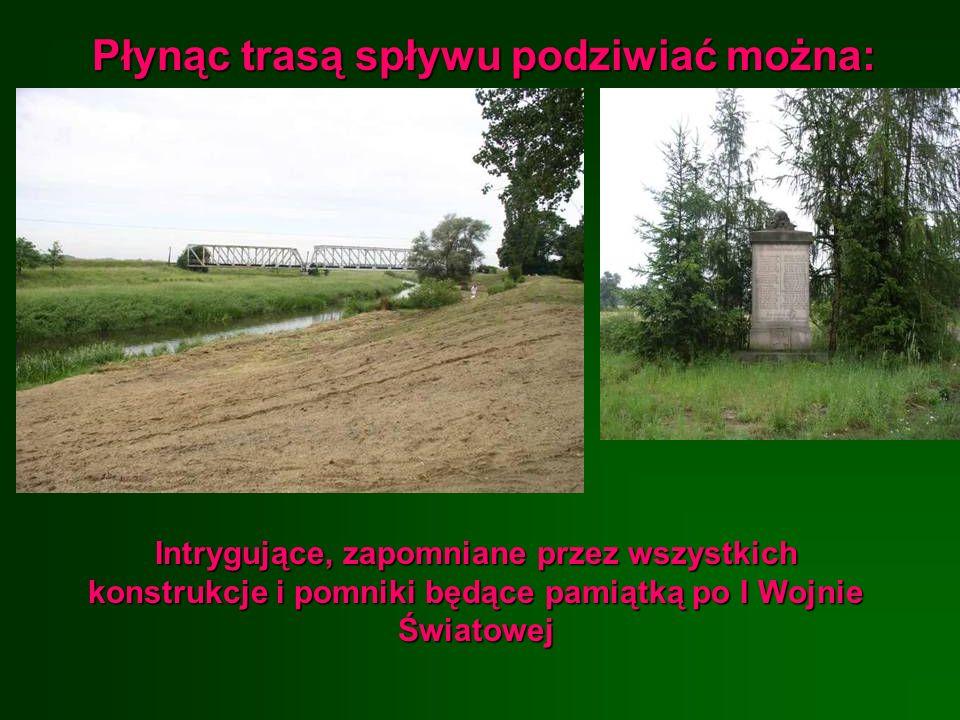 Płynąc trasą spływu podziwiać można: Intrygujące, zapomniane przez wszystkich konstrukcje i pomniki będące pamiątką po I Wojnie Światowej