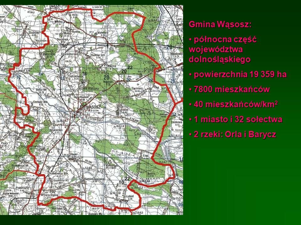 Gmina Wąsosz: północna część województwa dolnośląskiego północna część województwa dolnośląskiego powierzchnia 19 359 ha powierzchnia 19 359 ha 7800 m