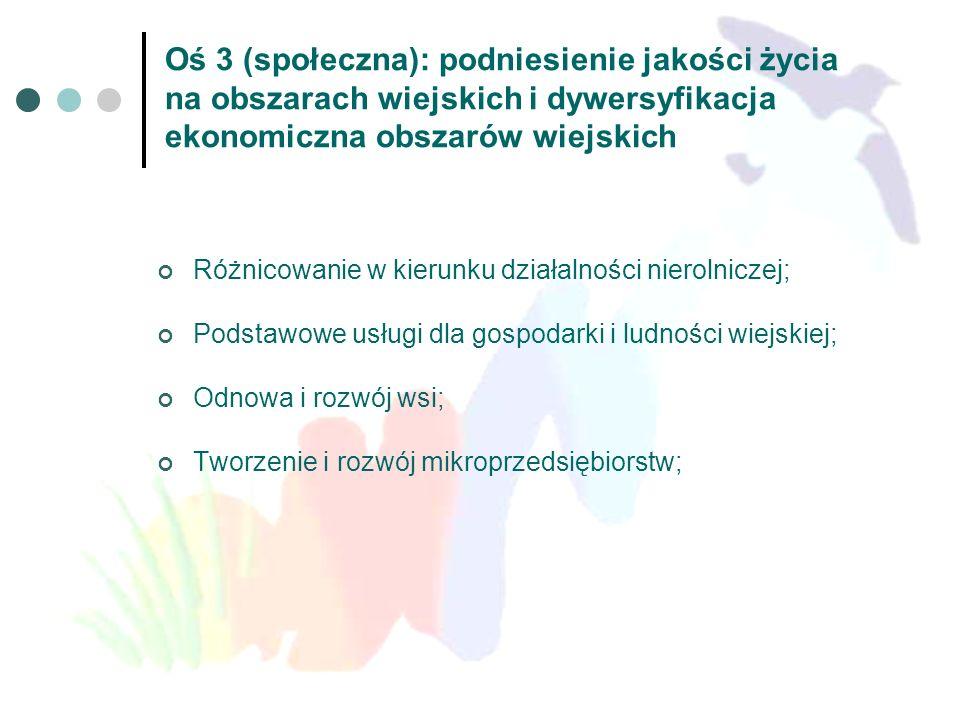Oś 3 (społeczna): podniesienie jakości życia na obszarach wiejskich i dywersyfikacja ekonomiczna obszarów wiejskich Różnicowanie w kierunku działalnoś