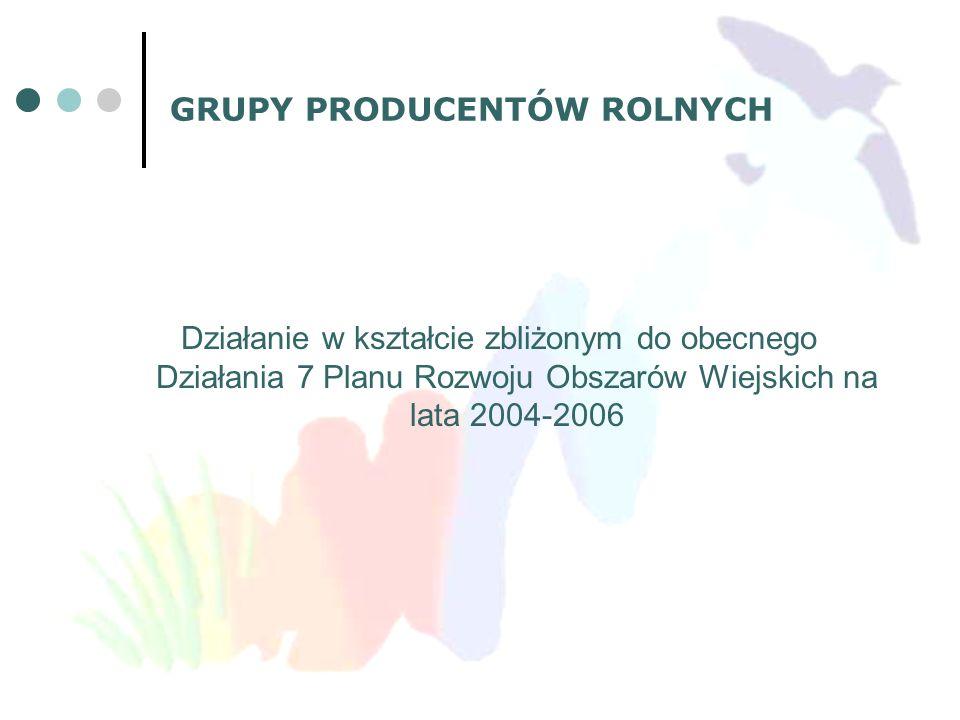 GRUPY PRODUCENTÓW ROLNYCH Działanie w kształcie zbliżonym do obecnego Działania 7 Planu Rozwoju Obszarów Wiejskich na lata 2004-2006