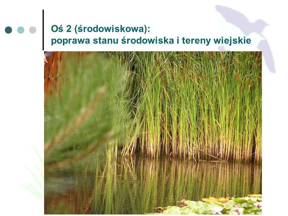 Oś 2 (środowiskowa): poprawa stanu środowiska i tereny wiejskie